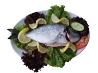 Bream grilled